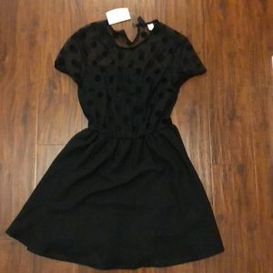 NWT H&M polka dot skater dress